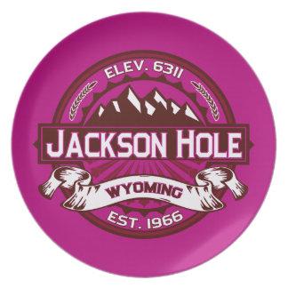 Jackson Hole Raspberry Dinner Plates