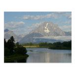 Jackson Hole River Postcard
