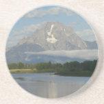 Jackson Hole River Sandstone Coaster