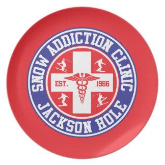 Jackson Hole Snow Addiction Clinic Party Plates