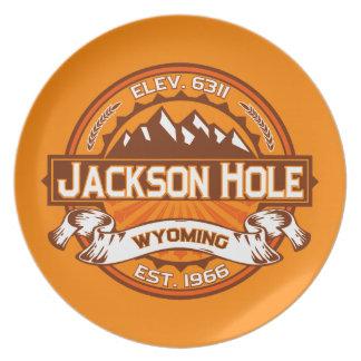 Jackson Hole Tangerine Party Plates