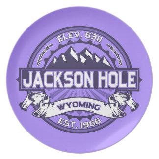 Jackson Hole Violet Party Plate