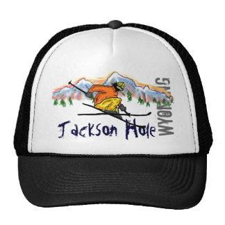 Jackson Hole Wyoming ski hat