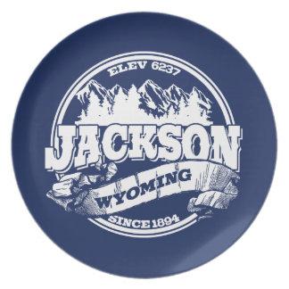 Jackson Old Circle Blue Melamine Plate