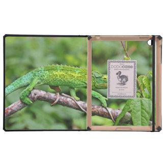 Jacksons Chameleon iPad Covers