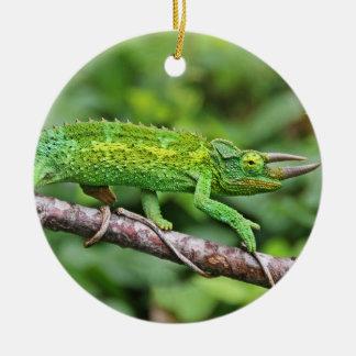 Jacksons Chameleon Ceramic Ornament