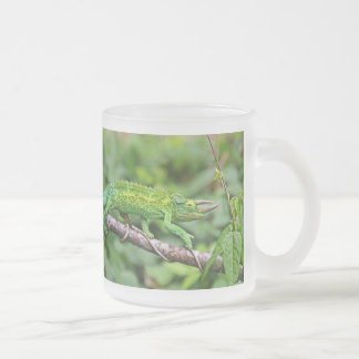 Jacksons Chameleon Frosted Glass Coffee Mug