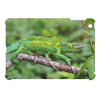 Jacksons Chameleon iPad Mini Cases