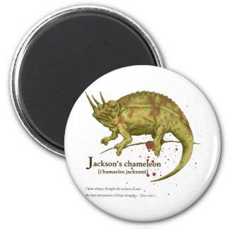 Jackson's chameleon - sepia fridge magnets
