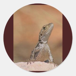 Jacky Dragon Stickers