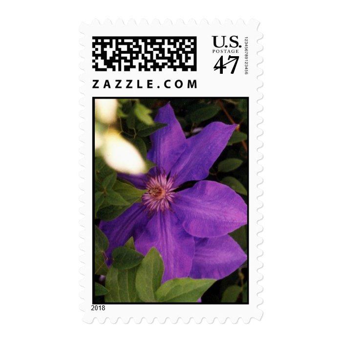 jacmani stamp
