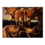 Jacob Jordaens- cinco estudios de vacas Tarjeta Postal