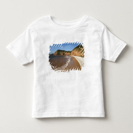 Jacob's Ladder Bay Toddler T-shirt