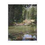Jade green colored Devils Lake, Oregon Stretched Canvas Prints