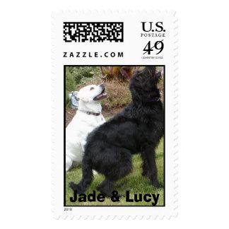 Jade y Lucy