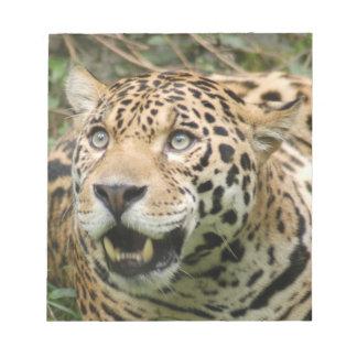 jaguar10x10 libreta para notas
