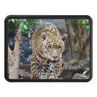 Jaguar20150501 Tow Hitch Cover