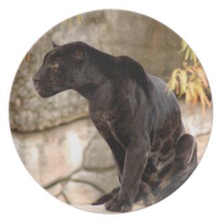 jaguar-10 plato de cena