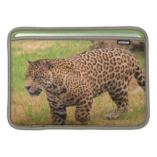 "Jaguar 11"" MacBook Sleeve"