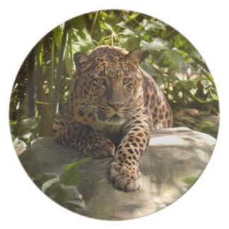 Jaguar 1515 plato de cena