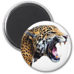 jaguar 2 inch round magnet