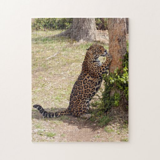 jaguar-2 jigsaw puzzle