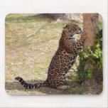 jaguar-2 mouse pad