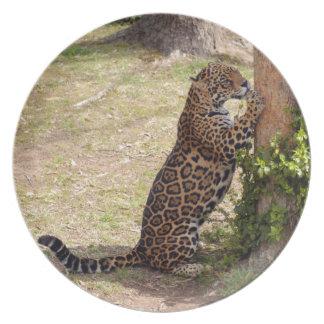 jaguar-2 platos de comidas