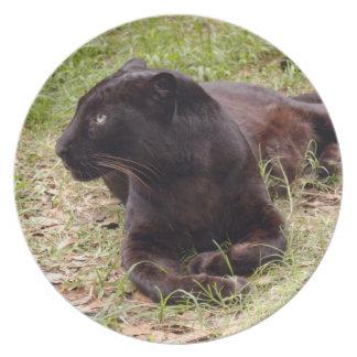 Jaguar 3528 plato de cena
