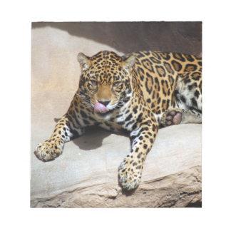 jaguar-5 bloc de papel