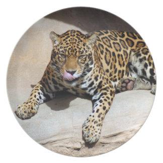 jaguar-5 plato de cena