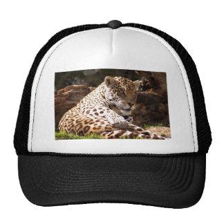 jaguar-6 trucker hat