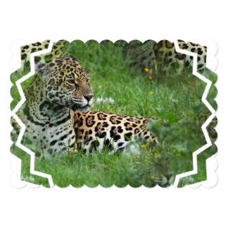 jaguar-9 invitation