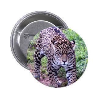 Jaguar Africa Jungle Safari Nature Peace Destiny Pin