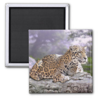 Jaguar and Mayan Temple 2 Inch Square Magnet
