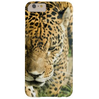 Jaguar Barely There iPhone 6 Plus Case