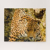 Jaguar Big Cats . Jigsaw Puzzle