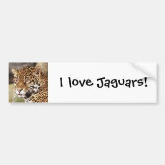 Jaguar Bumper Sticker Car Bumper Sticker