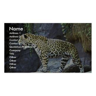 Jaguar Business Card
