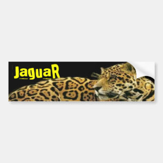 Jaguar Etiqueta De Parachoque