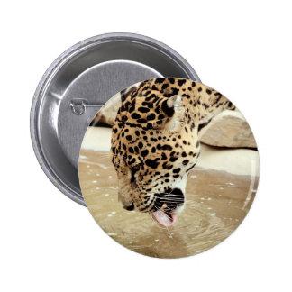 jaguar cat.jpg button