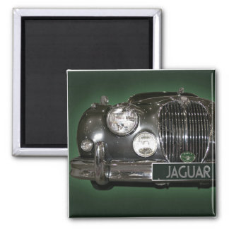 Jaguar close up magnets