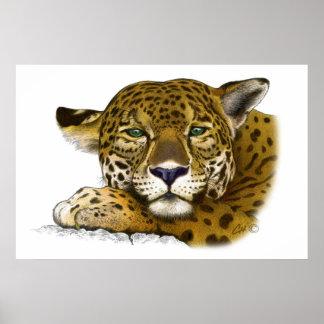 Jaguar colored poster