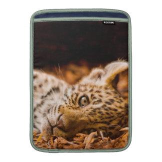 Jaguar Cub Lying in Foliage MacBook Sleeve