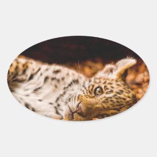 Jaguar Cub Lying in Foliage Oval Sticker