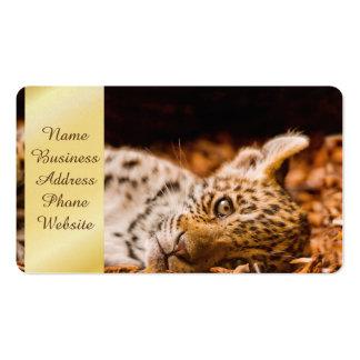 Jaguar Cub que miente en follaje Tarjetas De Visita