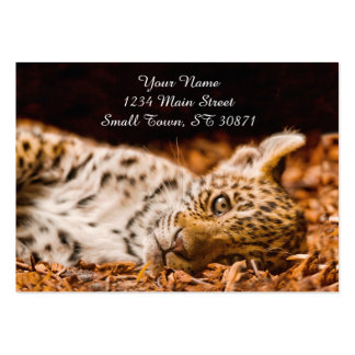 Jaguar Cub que miente en follaje Tarjetas De Visita Grandes