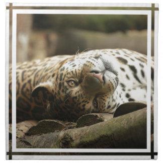 Jaguar de reclinación