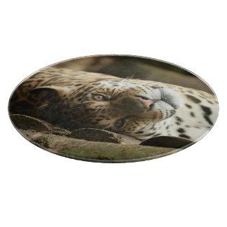 Jaguar de reclinación tablas para cortar