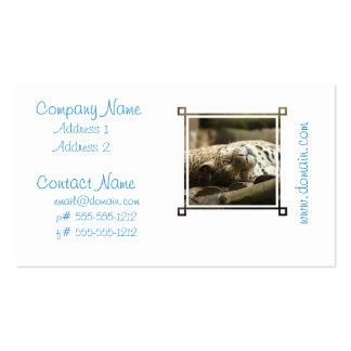 Jaguar de reclinación plantillas de tarjeta de negocio